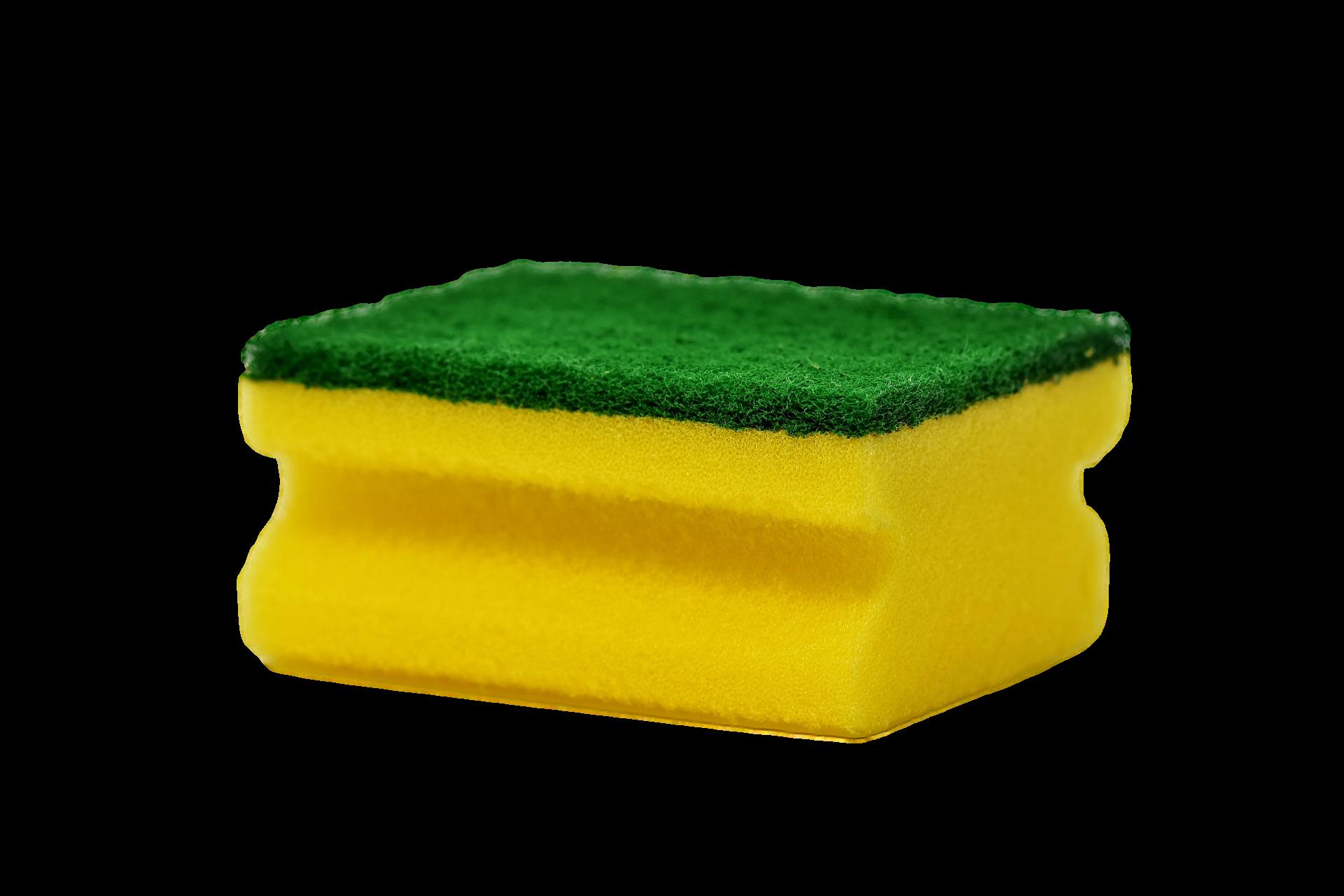 Scoruing-Sponge-Single