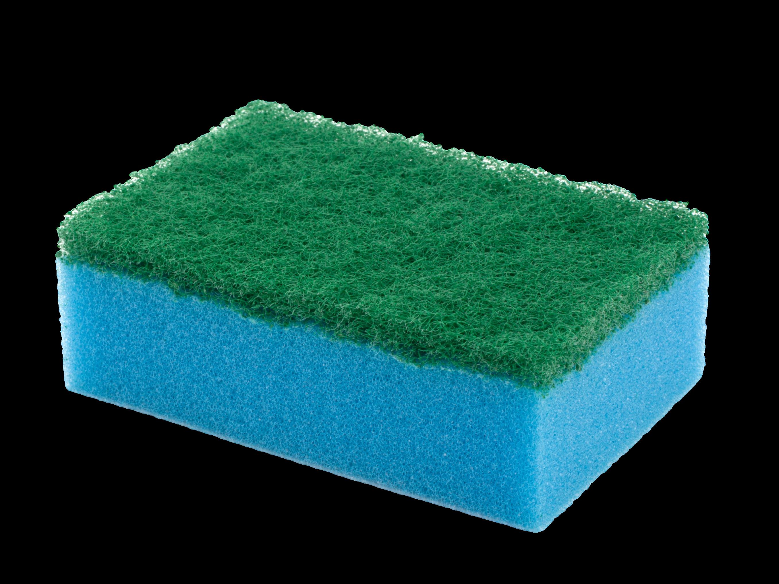 economic flat scouring sponge blue