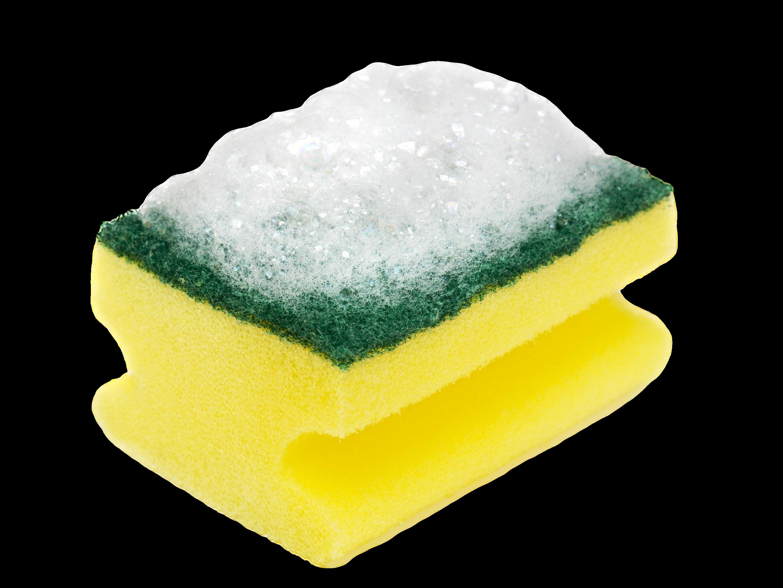 scouring grooved sponge foamy